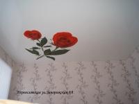 Переясл.Запорожская 9аПопопа (9)